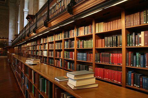 biblioteka_3