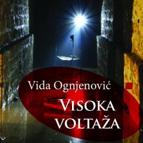 Nova knjiga eseja Vide Ognjenović