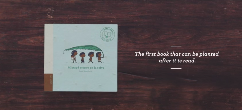 jacaranda-book